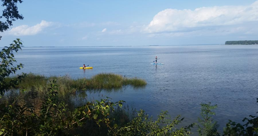 People kayaking and stand-up paddleboarding on the bay