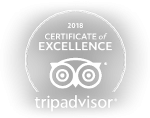 trip advisor logo - Certificate of Excellence