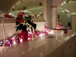 Romantic Flowers and Lighting around Counter top